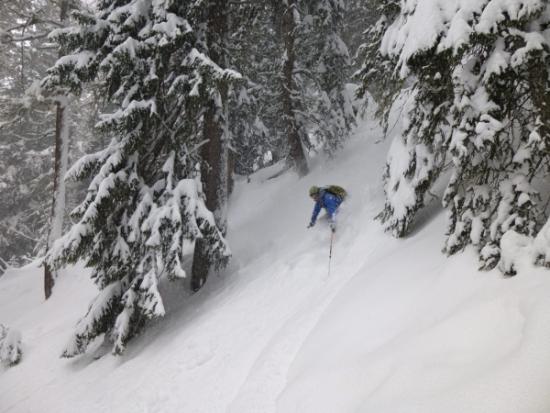 Courmayeur, Ski touring, freeride, off-piste, backcountry, Alpine Energy Guiding, mountaineering & ski adventures, Andrew Lanham Mountain Guide, Chamonix, Aosta Valley, Swiss, lyngen alps