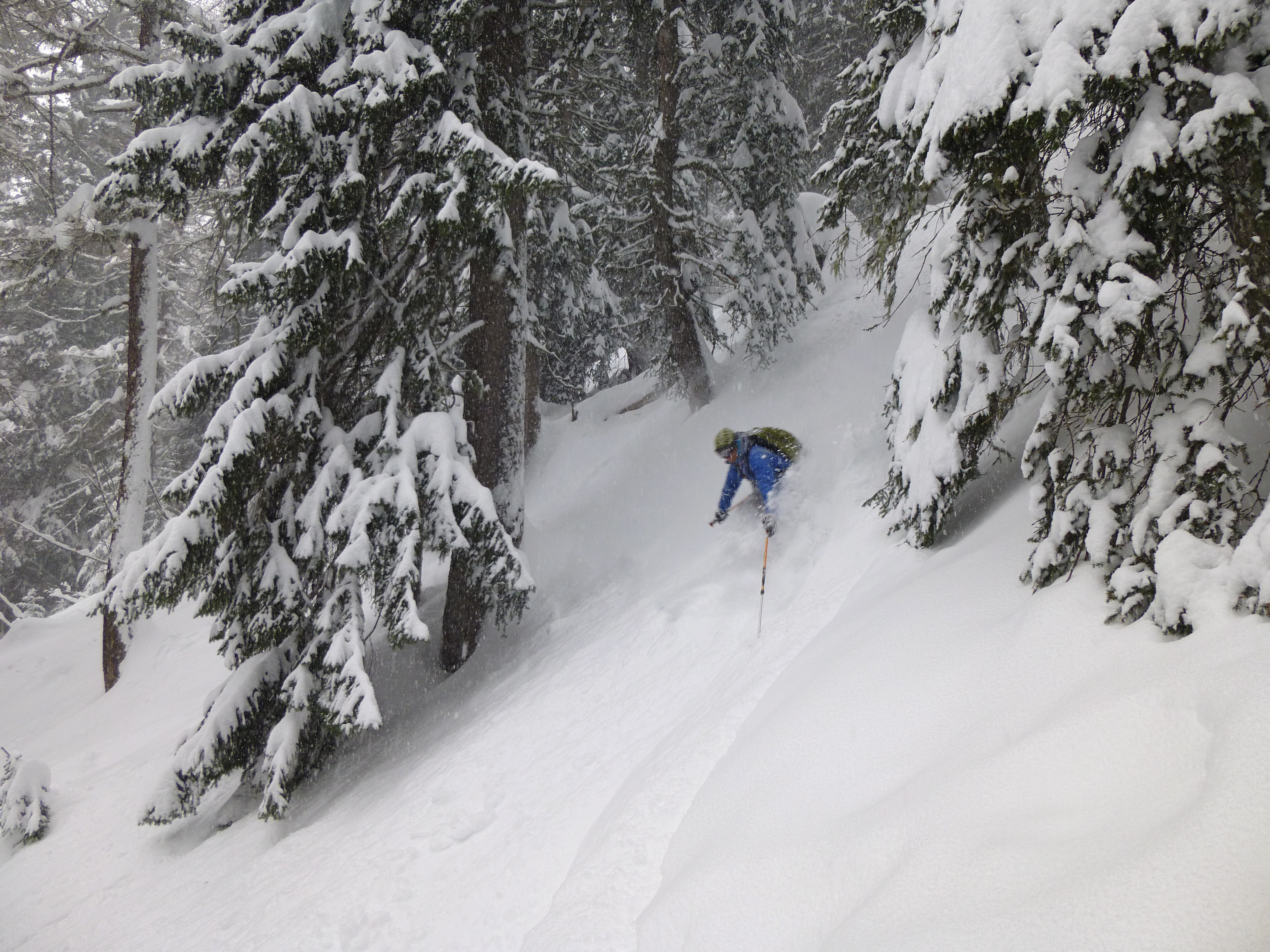 Skiing the trees in Italy last December, yesterdays conditions were similar..